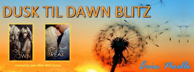 dusk til dawn blitz banner 1