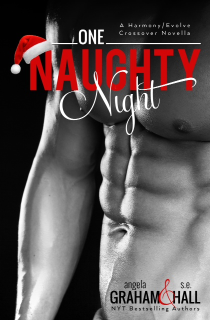 One Naughty Night ebook cover