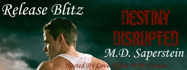 Destiny Disrupted RB Banner