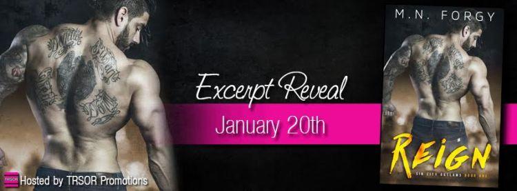 reign excerpt reveal