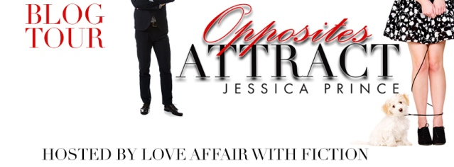 Opposites Attract BT Banner