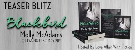 blackbird-tb-banner