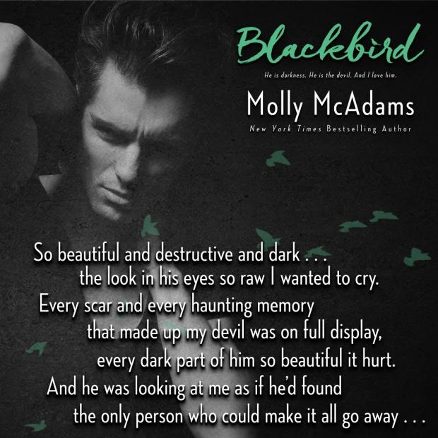blackbird-teaser-5