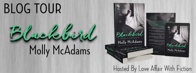blackbird-bt-banner