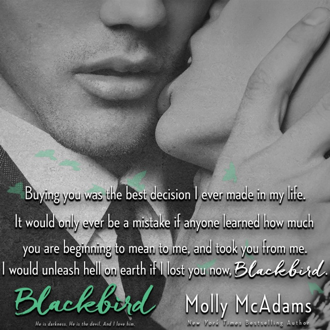 blackbird-teaser-6