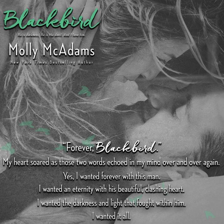 blackbird-teaser-7