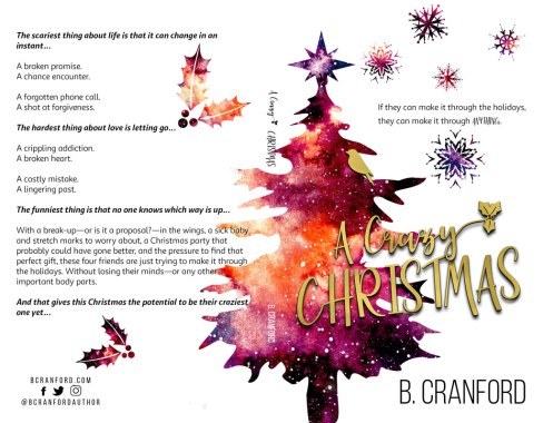 A Crazy Christmas by B Cranford — Full Wrap